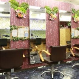 hair salon Ara