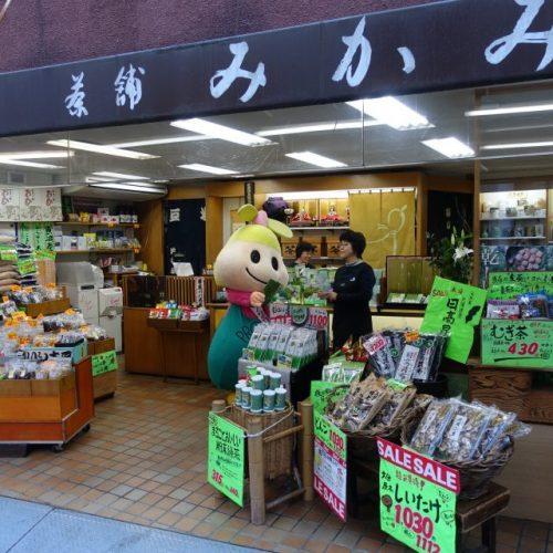 【ゴー!ゴー!アンリちゃん 第四弾】海老屋商店・茶舗みかみへゴー!ゴー!